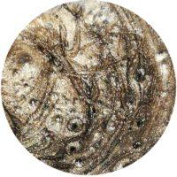 Nagelschick Metallic Farbgel Walnut